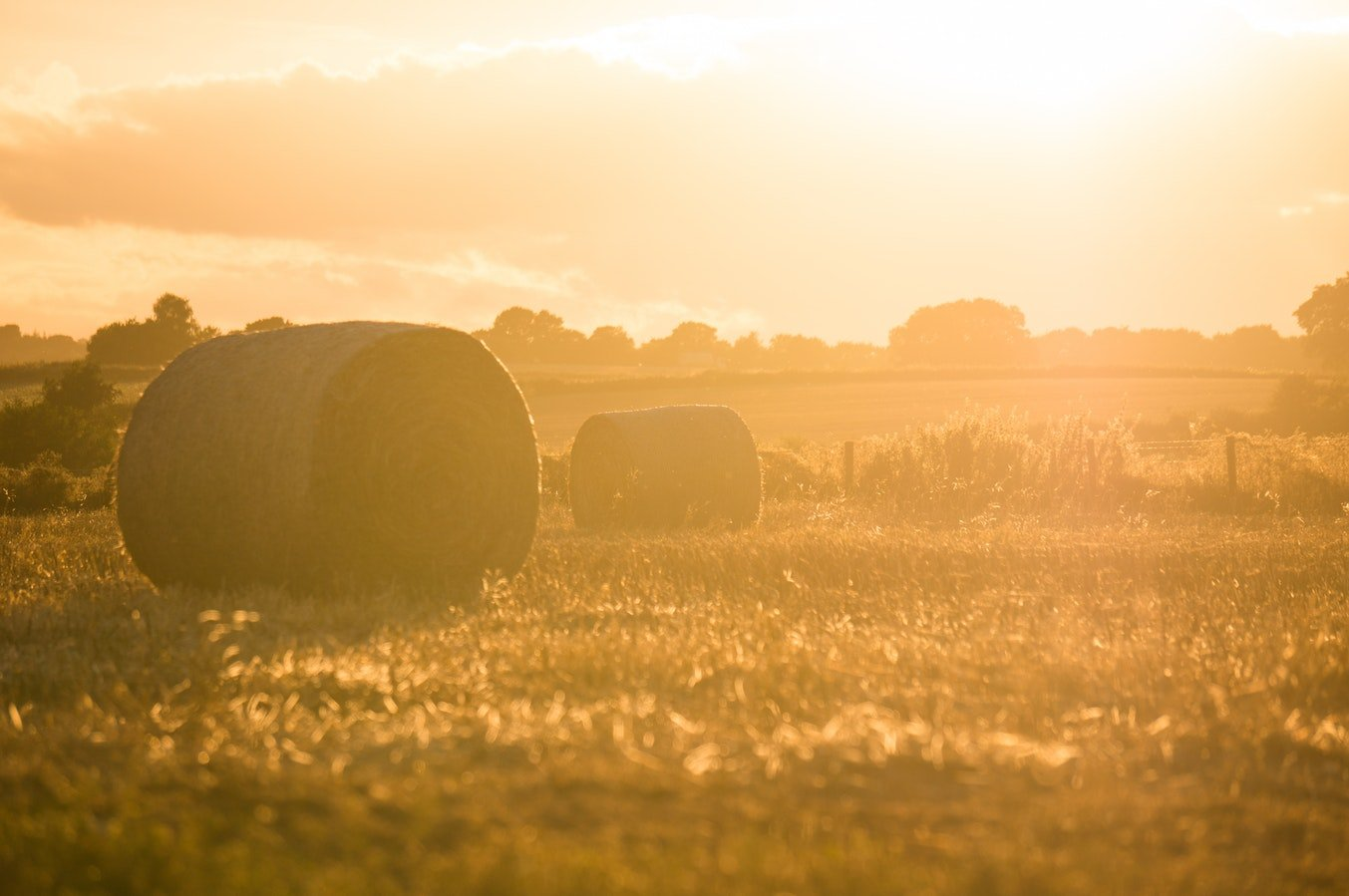 Agriculture Investing with Self-Directed IRA